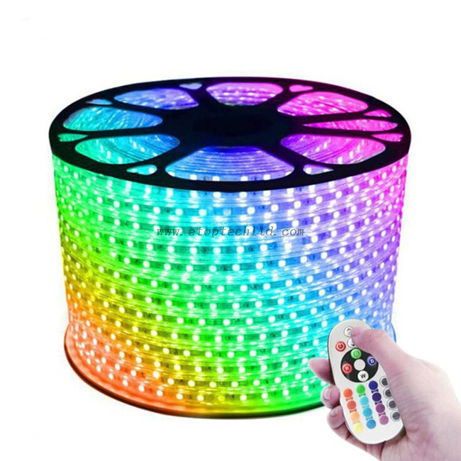 220V 110V LED Strip 5050 50m 100m IP67 Waterproof RGB Dual Color Rope lighting LED Flexible Strips